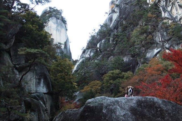 山梨の観光名所昇仙峡を愛犬とめぐってきました!<山梨県・甲府市>