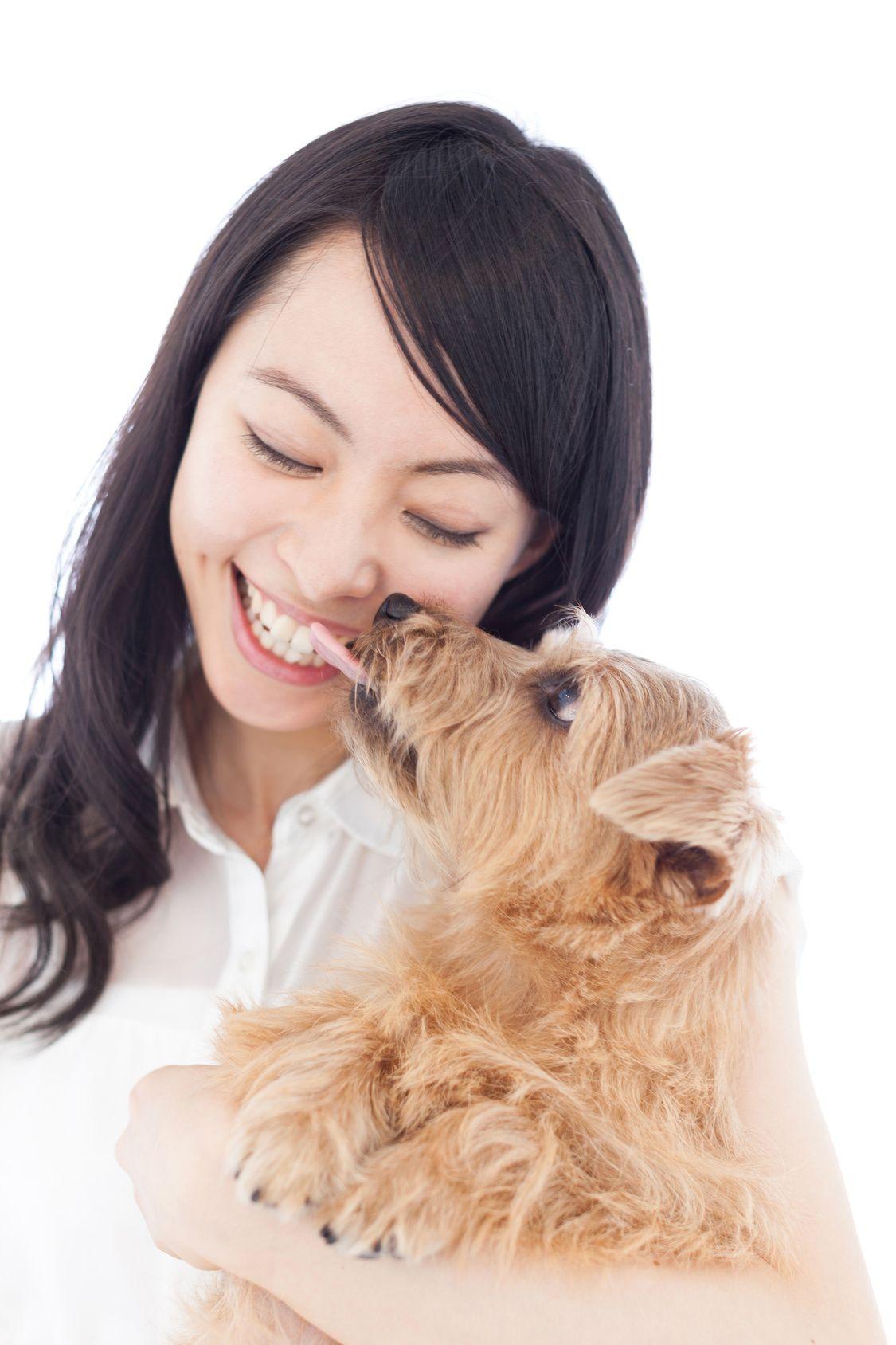 こんなに可愛いのにお口が臭う!? 愛犬の口臭予防法