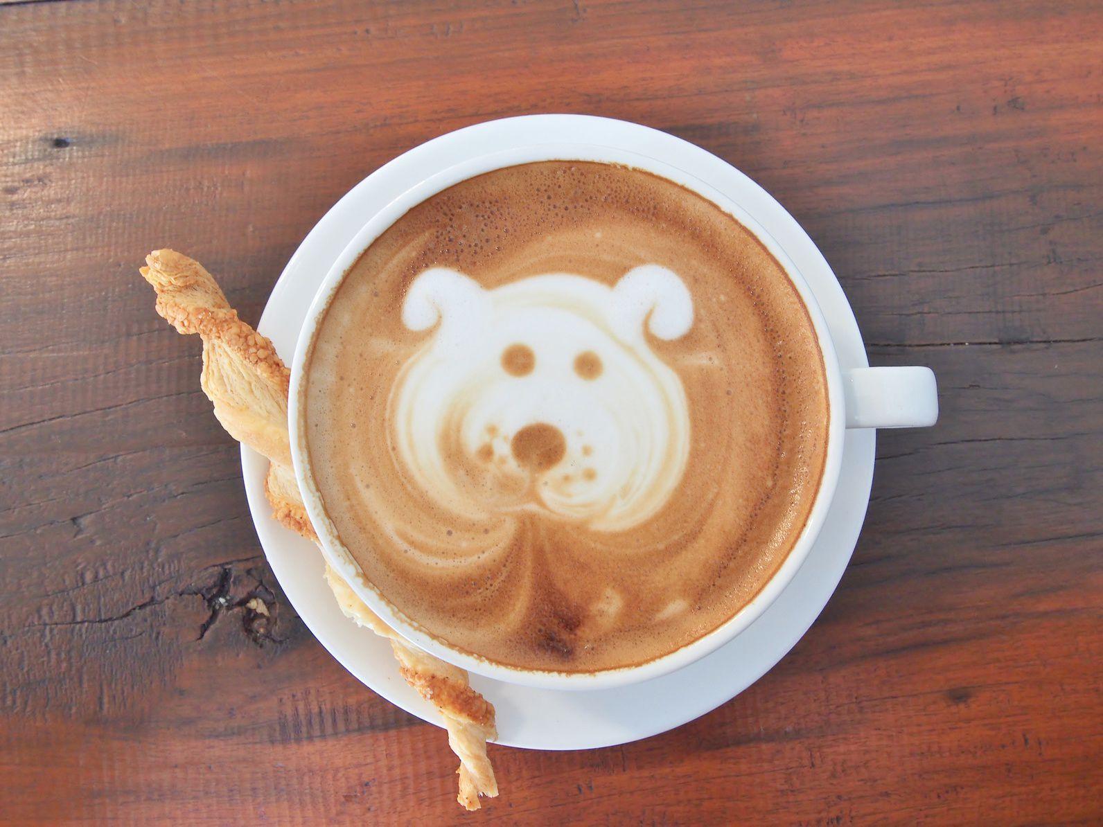 愛犬と楽しむドッグカフェで気をつけたいマナー
