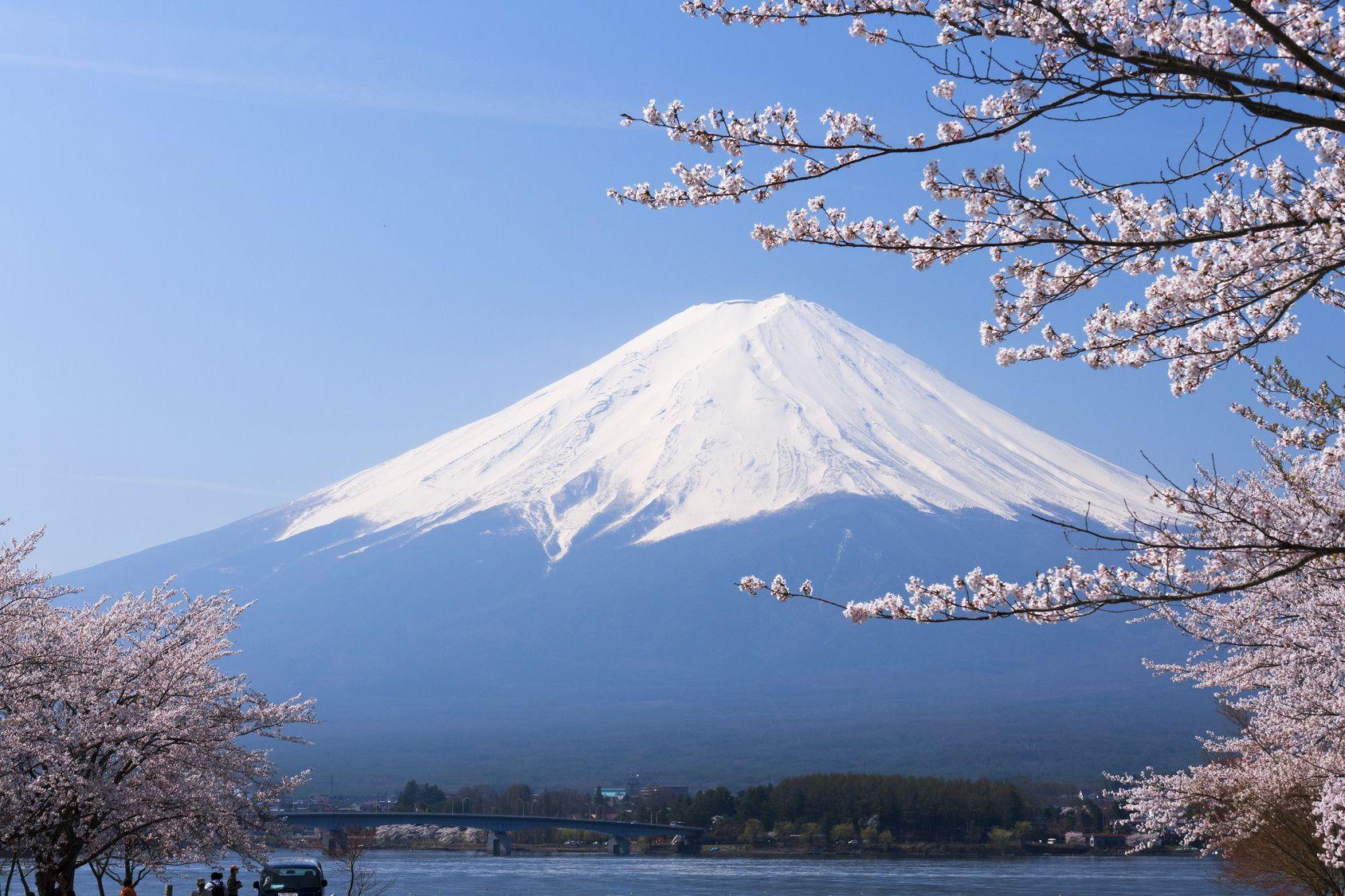 湖のそば!富士五湖周辺にあるワンちゃんと一緒に入れる飲食店4選