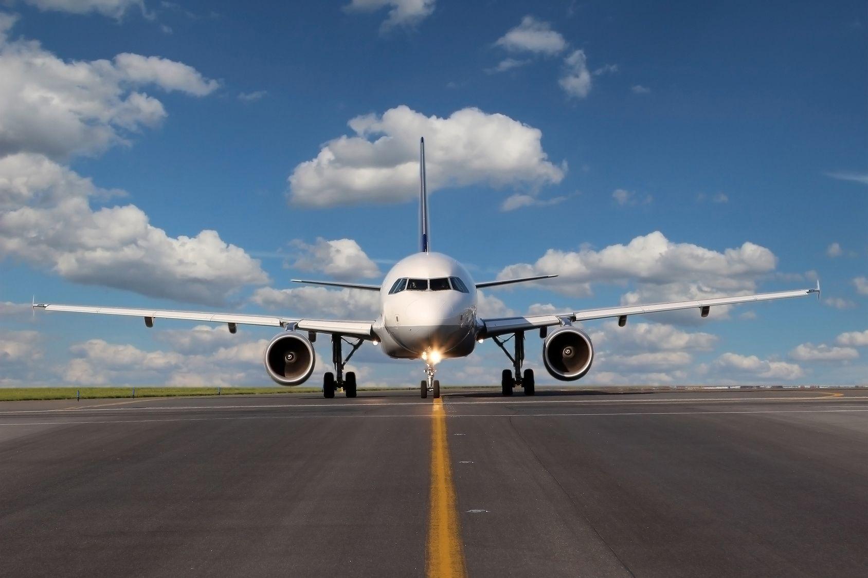 愛犬と一緒に空の旅を楽しみたい!航空会社のサービスの違いは?