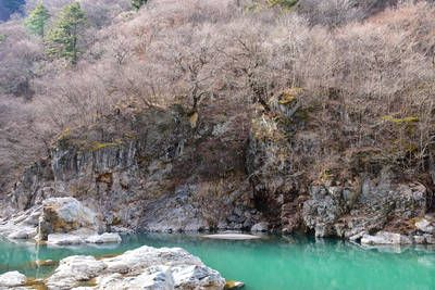 愛犬とのんびりお散歩♪日光・鬼怒川でおすすめのスポット5選