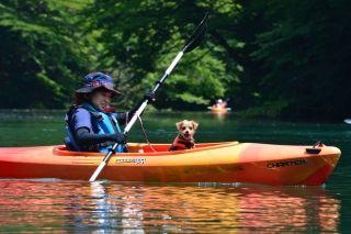 初心者でも参加OK♪わんこ一緒にできるカヌー体験ツアー