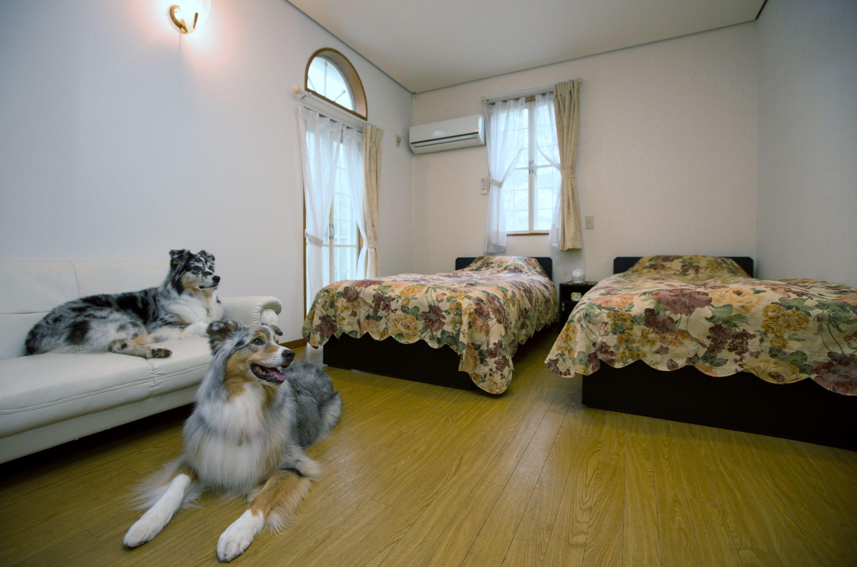 自然に囲まれた高原リゾート!伊豆高原で愛犬と泊まれる宿10選