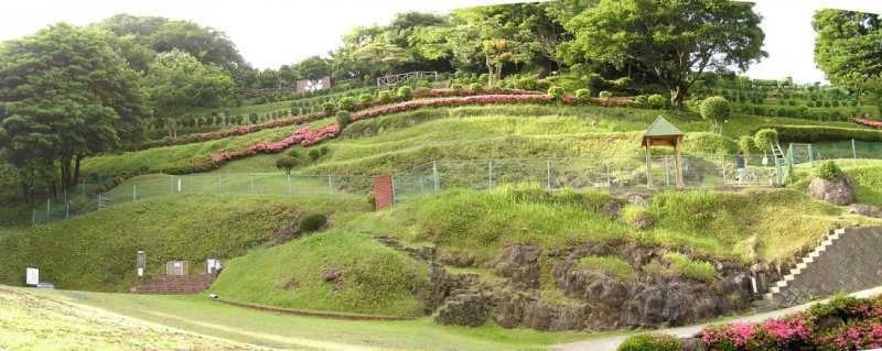 箱根・伊豆の景色を満喫!愛犬を連れて散歩やピクニックが楽しめるスポット4選