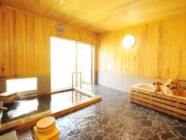 ワンちゃんも一緒に温泉旅行したい!そんな夢を叶えてくれる北関東の温泉宿4選
