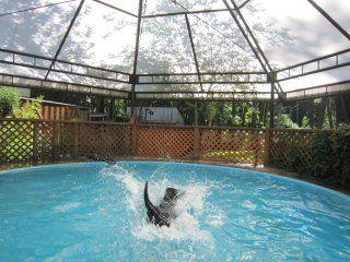 夏休みは山梨の大自然を満喫しよう!ワンちゃんと一緒に泊まれるペンション7選