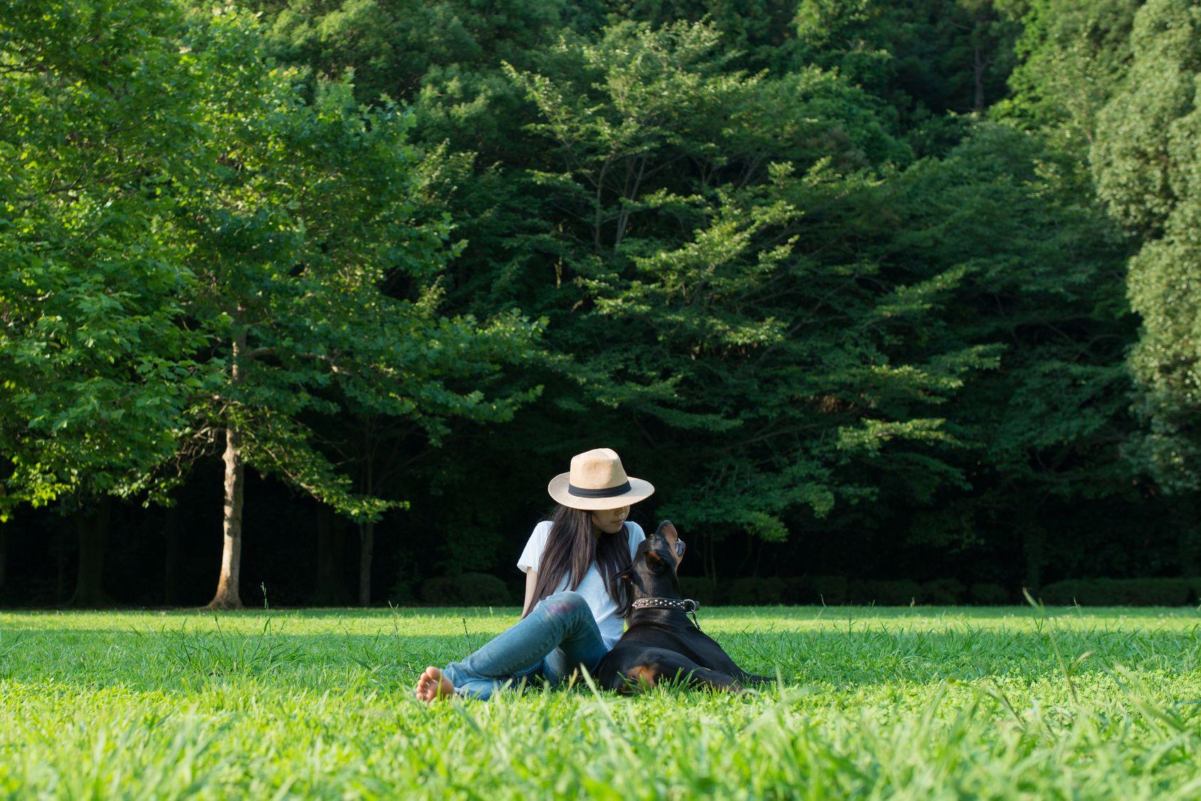 夏休み!愛犬と一緒にお泊りできる東海エリアのキャンプ場4選