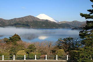 夏休み!愛犬と箱根を旅しよう~おすすめ観光スポット10選
