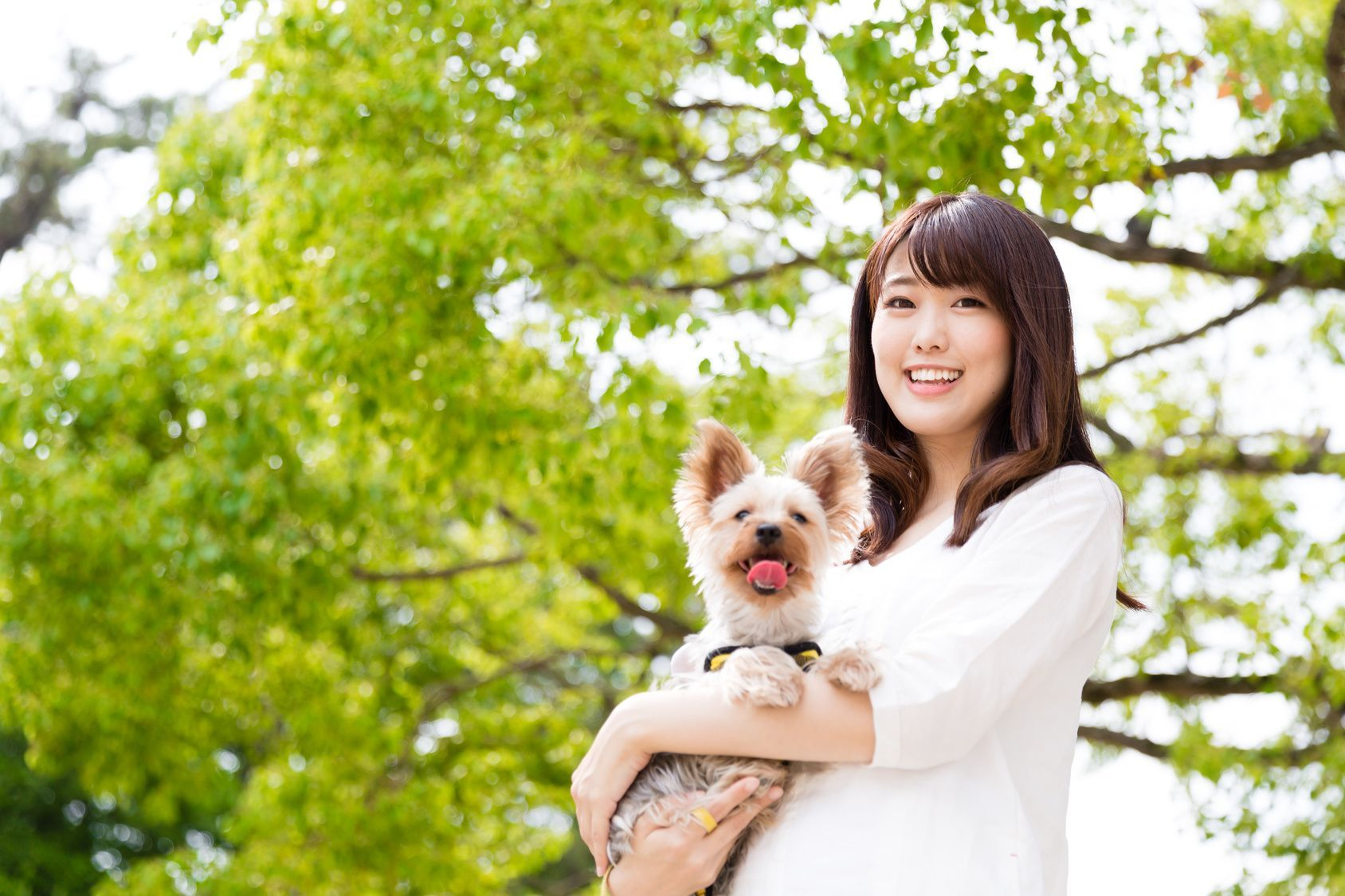 portrait of young asian woman with dog in the park