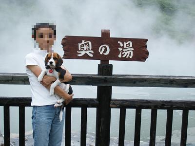 まだまだチビ愛犬と大自然の地北海道10日間の旅 Part5<北海道>
