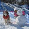 孫と愛犬と一緒に冬の軽井沢旅行<長野県・軽井沢町>