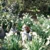 海の幸も堪能!愛犬と城ヶ島散策