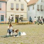 まるで愛犬と世界旅行? 関東周辺で愛犬と一緒に冒険が出来るスポット5選!