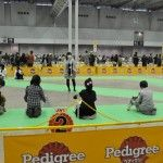[関東版] 愛犬と参加できるゴールデンウィーク イベント特集2017!