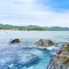 都心から3時間!愛犬家が教える海外旅行気分になれる伊豆下田の秘境ビーチスポット!