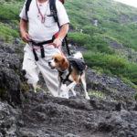 夏でも寒い宝永山!富士山に登るときはわんちゃんのパットに気をつけて!