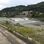 静岡市清水区を流れる興津川を満喫!ワンちゃんと行く長~い田舎の遊歩道