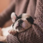 これで寒い冬も乗り切れる!愛犬とペアルックコーデを楽しめるオンラインショップ特集♪