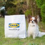 10月から発売中のIKEAペット用品「ルールヴィグ」を愛犬家による辛口レビュー!