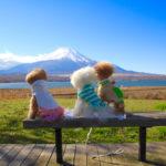 【富士五湖】冬の旅行でも愛犬と一緒に楽しめるおすすめスポット7選!