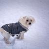 愛犬と一緒に冬の軽井沢旅行!人気のプレジデントリゾート軽井沢と周辺オススメスポット5選!
