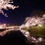 夜桜鑑賞もオススメ!愛犬と散策しながら楽しめる中部地方のお花見スポット<新潟・石川・富山・福井・長野>