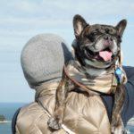 ゴールデンウィークのおでかけにおすすめ★自然いっぱいの淡路島で愛犬と一緒に春を満喫しよう