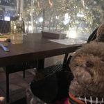週末限定♡愛犬を連れて美味しいお肉を食べられる「肉LABO」に行こう!