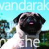 6月17日(日)、わんこマルシェ「wandarake Summer 2018!」が名古屋港 ガーデンふ頭  ひがし広場にて開催!