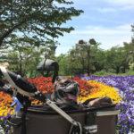 大阪市内で最大の公園!愛犬と一緒に「花博記念公園鶴見緑地」へお出かけ