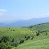 愛犬と一緒に大自然を満喫できる「ヘブンスそのはら」& 諏訪湖~さわやかな高原地帯を走るビーナスラインまで!<長野県>