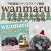 今年のクリスマスイブは愛犬と一緒に♡12月24日に「わんマル半田」開催!