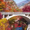 愛犬と一緒に紅葉&温泉を楽しもう!日本一の渓谷美を眺めながら紅葉鑑賞「昇仙峡」<山梨県>