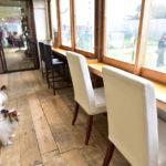 【千葉市内】愛犬家目線でチョイス!愛犬と一緒にくつろげて料理も美味しいドッグカフェTOP5