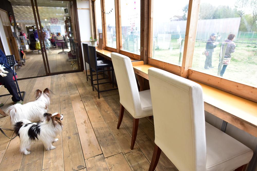 カフェ ドッグ 東京都内のドッグカフェおすすめ人気ランキング20選【サロン・ホテル付きのお店も!】