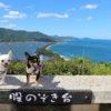 愛犬と自然を満喫旅行♡「天橋立」周辺の観光スポット・お食事処・民宿&豪華リゾート特集!<京都府>
