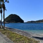 <関西地方>愛犬と南国気分を味わおう!和歌山県の超穴場ビーチ「すさみ海水浴場」をご紹介!