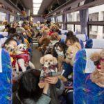 愛犬と一緒にいちご狩り!イルミネーション!ワンちゃんと一日たっぷり過ごす「イヌトミィバスイベント」レポート