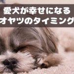 愛犬の幸福感アップ!わんちゃんに効果的なオヤツのタイミングとは?【動物看護師が解説】