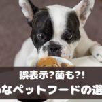 大切な愛犬のために!安心・安全なペットフード選びのチェックポイント【動物看護師が解説】