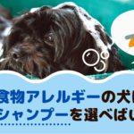 食物アレルギーの犬はどんなシャンプーを選べばいいの?【動物看護師が解説】