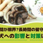 何時間が限界?長時間のお留守番、愛犬への影響と対策は?【動物看護師が解説】