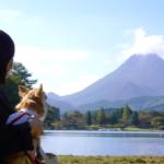 愛犬と一緒にボートに乗れちゃう!秋の志高湖(しだかこ)で紅葉鑑賞とピクニック<大分県別府市>
