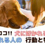 差はココ!犬に好かれる人と嫌われる人の行動と特徴【動物看護師が解説】