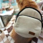 ダイソーで発見!ハーネスとして使える犬用リュックが想像以上に万能でした!