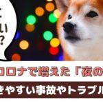 コロナ禍の今、愛犬の散歩で気をつけたいこと【動物看護師が解説】