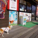 春のドライブにぴったり!愛犬と遊べる全国のドッグランがある道の駅10選