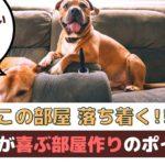 「この部屋落ち着く!」愛犬が快適に過ごせる部屋作りは?【動物看護師が解説】