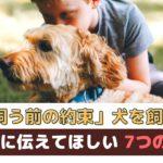 「犬を飼う前の約束」犬を迎える前に子供に伝えてほしい7つのこと【動物看護師が解説】